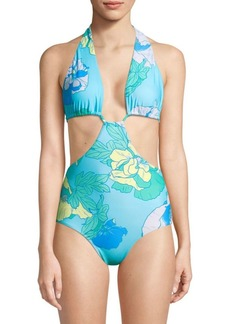 6 Shore Road Paradise One-Piece Swimsuit