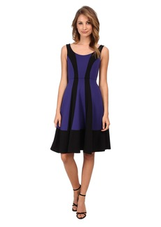 ABS Allen Schwartz Color Blocked Mid Fit and Flare Dress