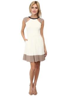 ABS Allen Schwartz Fit and Flare Color Blocked Dress