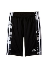 adidas Kids Essentials Camo Shorts (Big Kids)
