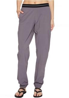 adidas Outdoor Lite Flex Pants