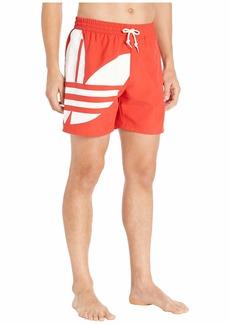 Adidas Big Trefoil Swim Shorts