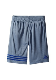 Adidas Defender Impact Shorts (Big Kids)