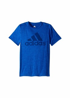 Adidas Graphic Tee (Big Kids)