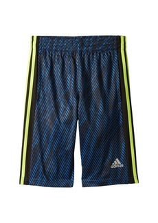 Adidas Influencer Shorts (Big Kids)