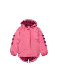 Adidas Insulated Jacket (Big Kids)