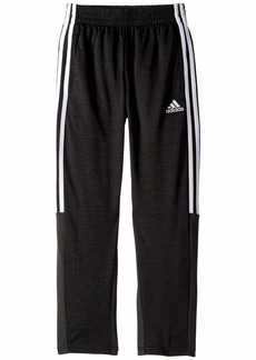 Adidas Melange Mesh Pants (Big Kids)