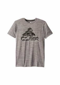 Adidas Short Sleeve Heather Camo Badge of Sport Tee (Big Kids)