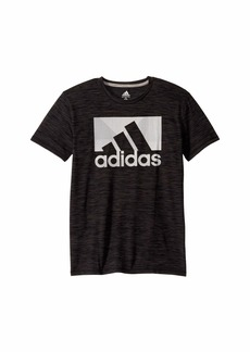 Adidas Short Sleeve Knockthrough Badge of Sport Tee (Big Kids)