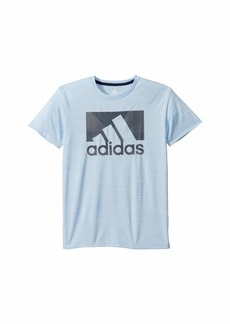 Adidas Short Sleeve Knockthrough Badge of Sport Tee (Big Kids)