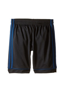 Adidas Squadra 17 Shorts (Little Kids/Big Kids)