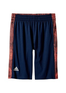 Adidas Supreme Speed Shorts (Big Kids)