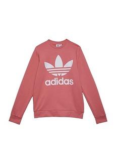Adidas Trefoil Crew (Little Kids/Big Kids)