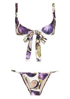 Adriana Degreas Fig Bikini