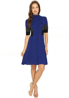 Adrianna Papell Mock Neck Color Block Flare Sweater Dress