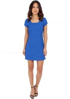 Adrianna Papell Pique A-Line Dress