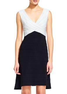 Adrianna Papell Sleeveless Colorblock Sheath Dress