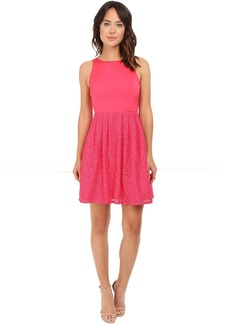 Adrianna Papell Sleeveless Lace and Faille Party