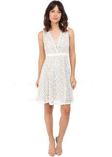 Adrianna Papell V Inset Fit & Flare Lace Dress
