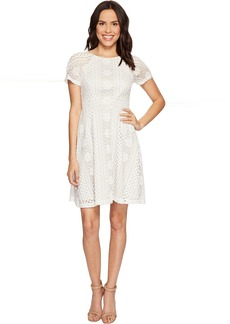 Adrianna Papell Verona Striped Lace Spliced Fit and Flare Dress