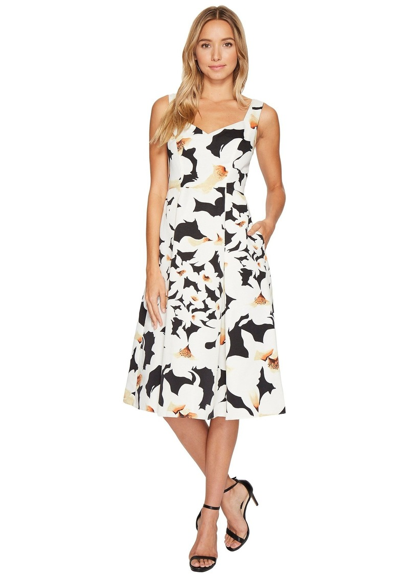 Adrianna Papell Lily Floral Fit and Flare Dress