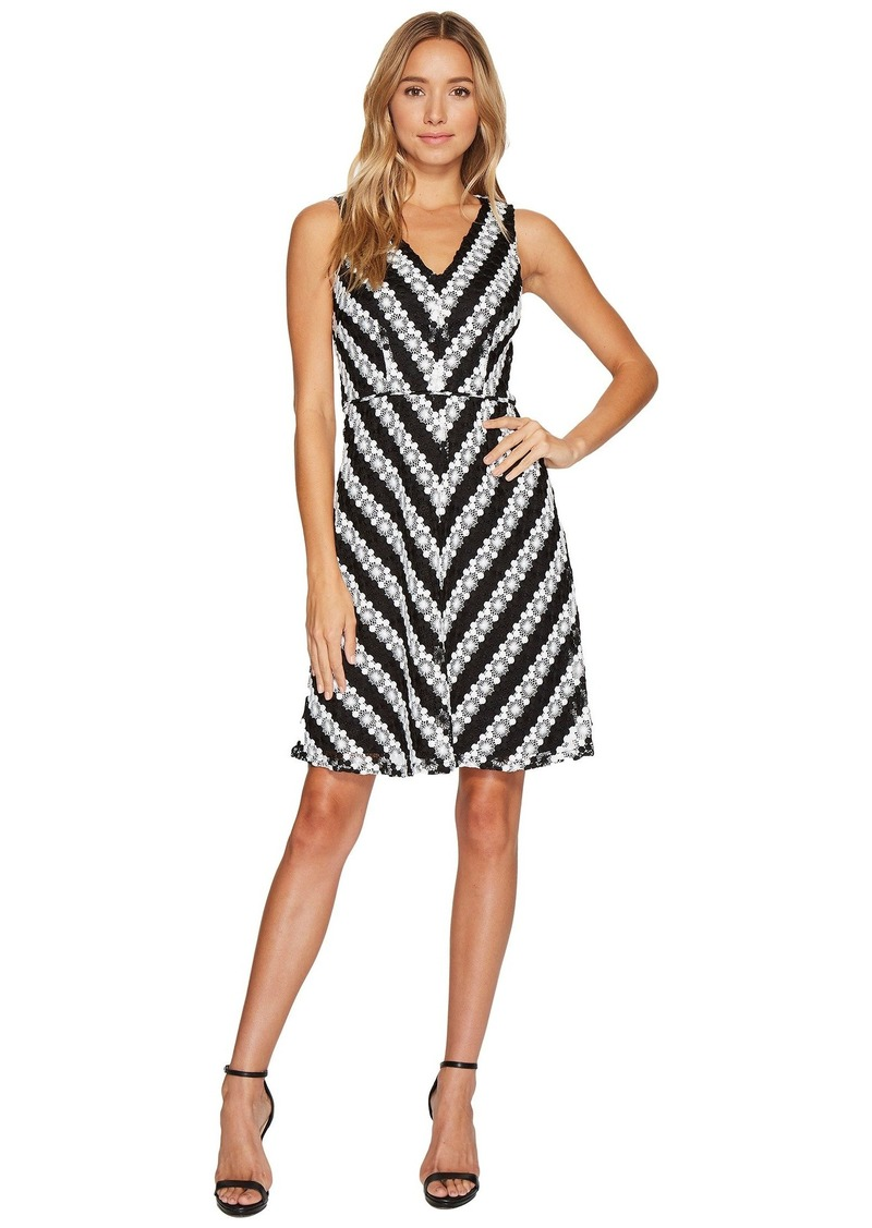 Adrianna Papell Striped Fit and Flare Lace Dress