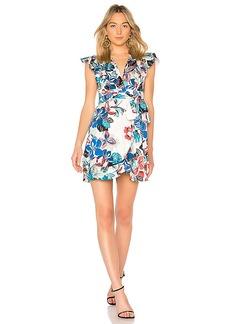 Alexis X REVOLVE Adena Mini Dress