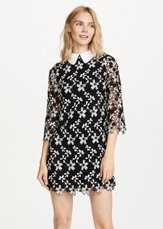 alice + olivia Debra Oversized Collar Dress