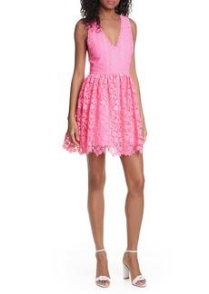 Alice + Olivia Iris Lace Sleeveless Fit & Flare Dress
