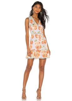 Alice + Olivia Kirean Mini Dress