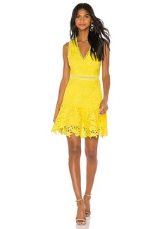 Alice + Olivia Marleen Fit Flare Dress