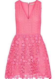 Alice + Olivia Woman Iris Flared Guipure Lace Mini Dress Bubblegum