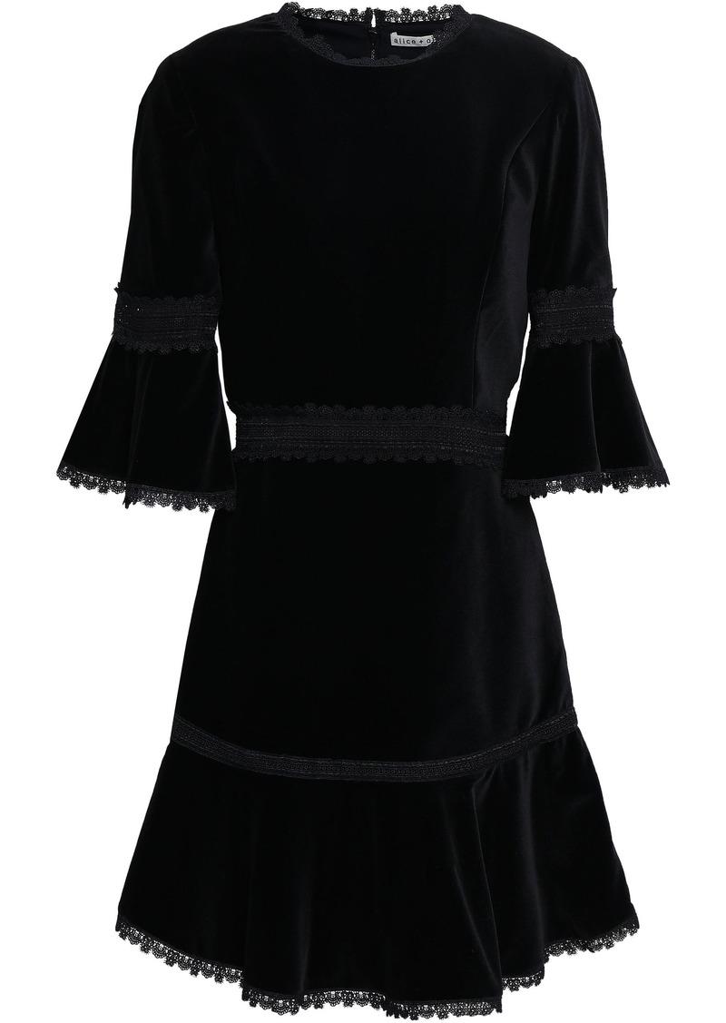 Alice + Olivia Woman Lace-trimmed Velvet Mini Dress Black
