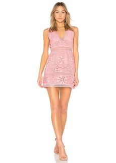 Alice + Olivia Zula Lace Dress