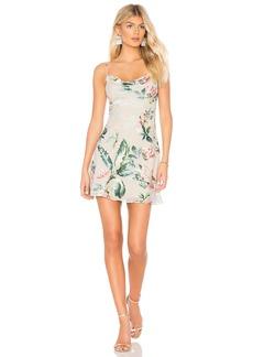 Amanda Uprichard Noella Slip Dress