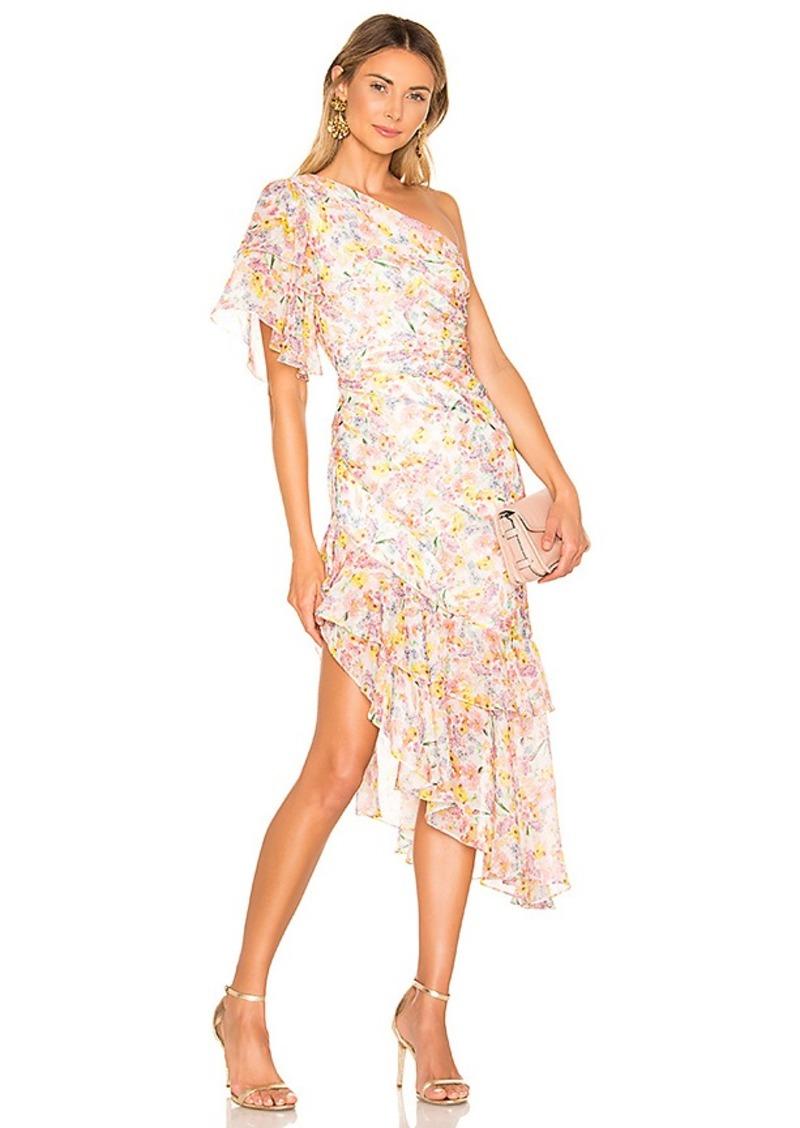 AMUR Clayton Dress