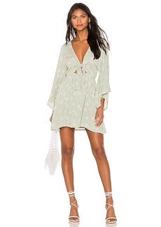 AMUSE SOCIETY Clementina Dress