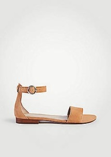 Ann Taylor Aislyn Suede Flat Sandals