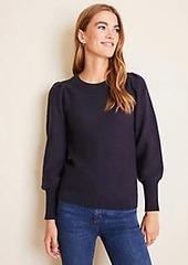 Ann Taylor Balloon Sleeve Sweater