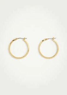 Ann Taylor Basic Hoop Earrings
