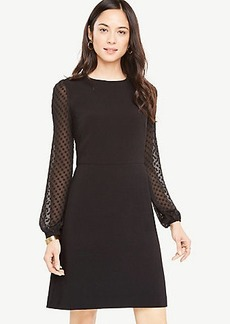 Chiffon Dot Sleeve Shift Dress