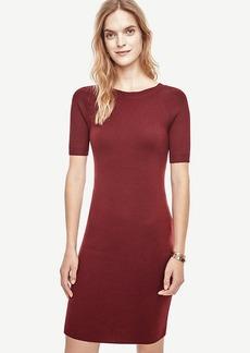 Ann Taylor Extrafine Merino Wool V-Back Sweater Dress