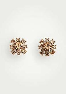 Ann Taylor Statement Flower Stud Earrings