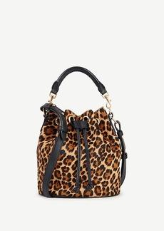 Ann Taylor Haircalf Mini Bucket Bag