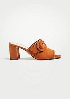 Ann Taylor Hester Suede Block Heel Sandals