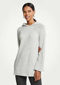 Ann Taylor Hoodie Sweater