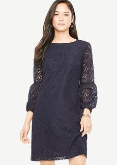 Lace Lantern Sleeve Shift Dress