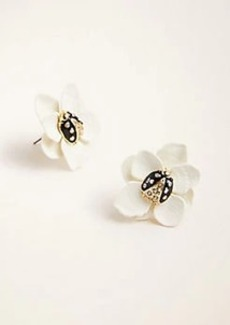 Ann Taylor Ladybug Flower Stud Earrings