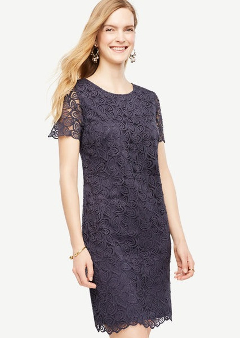Ann Taylor Leaf Lace Shift Dress