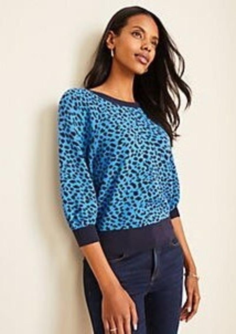 Ann Taylor Leopard Print Raglan Sleeve Sweater